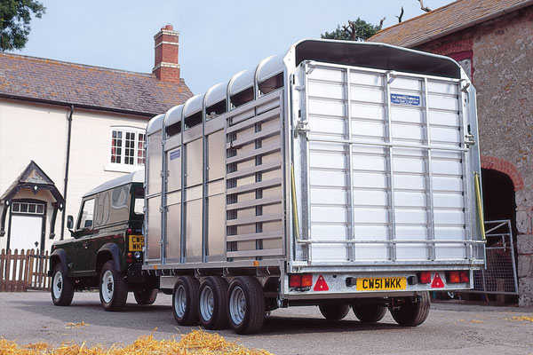 Ifor Williams Livestock